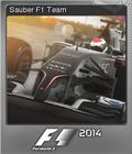 F1 2014 Foil 09