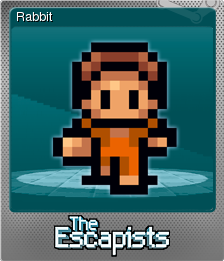 The Escapists Foil 5