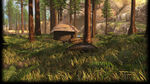 InFlux Background Forest