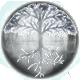 Salt and Sanctuary Badge Foil