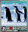 Pixel Puzzles 2 Birds Foil 8
