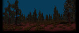 Uncrowded Background Forest