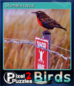 Pixel Puzzles 2 Birds Card 2