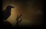 Shardlight Background Raven background