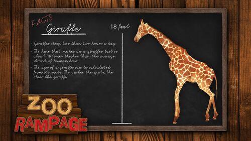 Zoo Rampage Artwork 1