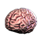 Surgeon Simulator 2013 Emoticon ss13brain