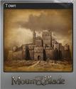 Mount & Blade Foil 5