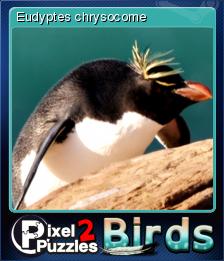 Pixel Puzzles 2 Birds Card 3