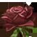 Flower Shop Summer In Fairbrook Emoticon rosepink