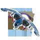Echelon Wind Warriors Badge 5