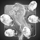 Secret of the Magic Crystals Badge Foil