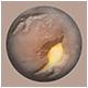 Orbit Badge 4