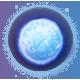 Pulstar Badge 4