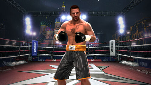 Real Boxing Artwork 8