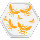 Hive Badge 05