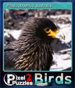 Pixel Puzzles 2 Birds Card 5