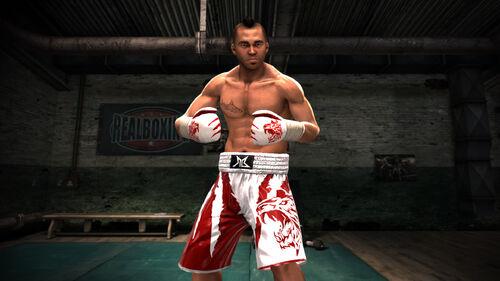 Real Boxing Artwork 5