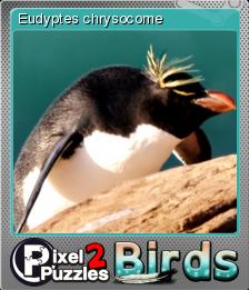 Pixel Puzzles 2 Birds Foil 3