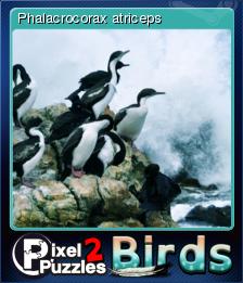 Pixel Puzzles 2 Birds Card 4