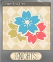 KNIGHTS Foil 3