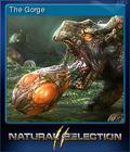 Natural Selection 2 Card 4