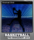 Basketball Pro Management 2015 Foil 4