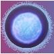 Pulstar Badge 3