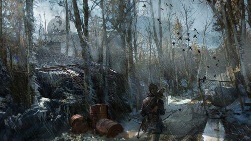 Rise of the Tomb Raider Artwork 5