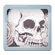 Steam Awards 2016 Badge 0010