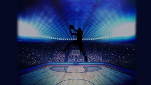 Basketball Pro Management 2015 Artwork 4