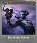 The Elder Scrolls Online Foil 8
