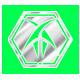 Foresight Badge 2