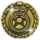 Lords of Football Badge 5
