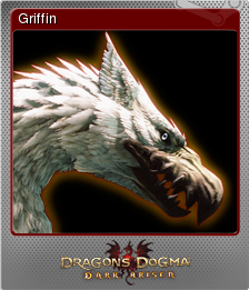 Dragon's Dogma Dark Arisen Foil 5