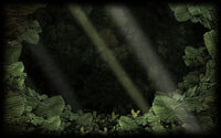 Wildlife Park Background Wildlife-Park-Botanic