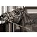 Mount & Blade Emoticon mount