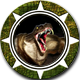 Draconian Wars Badge 3