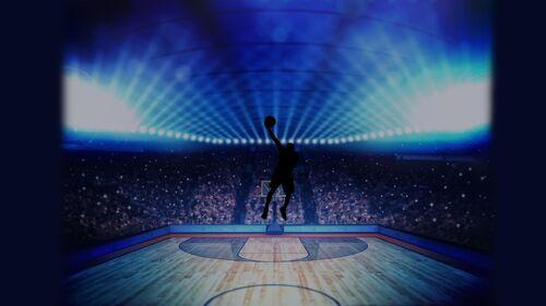 Basketball Pro Management 2015 Artwork 6