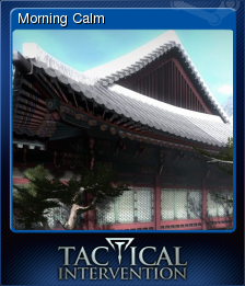 Tactical Intervention Card 11