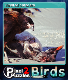 Pixel Puzzles 2 Birds Card 9