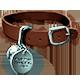 Blackwell Convergence Badge 1