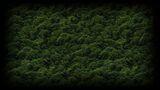 Super Killer Hornet Resurrection Background Trees