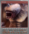 Shadowgrounds Survivor Foil 4