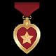 Xenonauts Badge 5