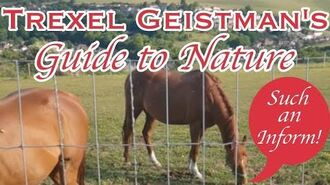Trexel Geistman's Guide to Nature