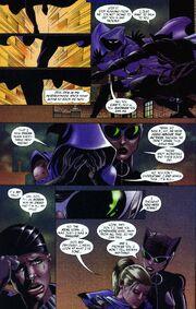 Catwoman v2 -34 (02)