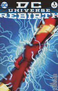 Dc universe rebirth 1G cover
