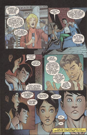 Basfao 2005 page 40