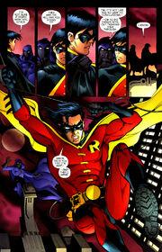 Robin 175 (05)
