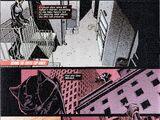 Catwoman Vol 4 42